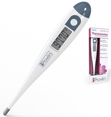 Best BBT Thermometer