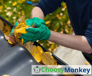 When is The Best Time to Clean Your Gutters
