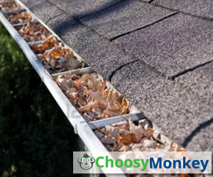 Why should I have my gutters cleaned
