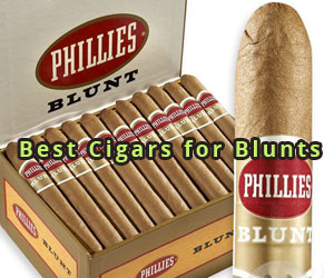 Best-Cigars-for-Blunts